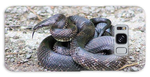 Black Snake Galaxy Case