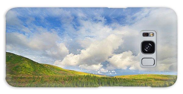 Boreal Forest Galaxy Case - Black Spruce On Fall Tundra  by Yva Momatiuk John Eastcott