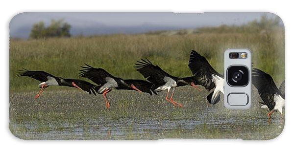 Black Stork Landing. Galaxy Case
