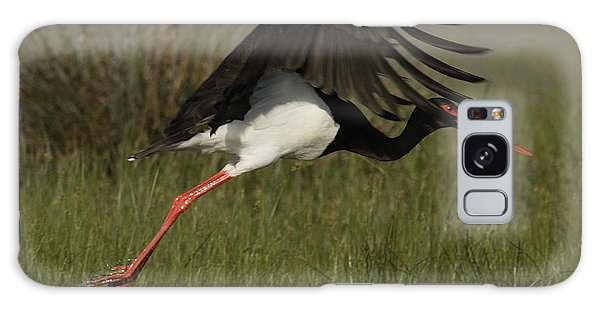 Black Stork Taking Off. Galaxy Case