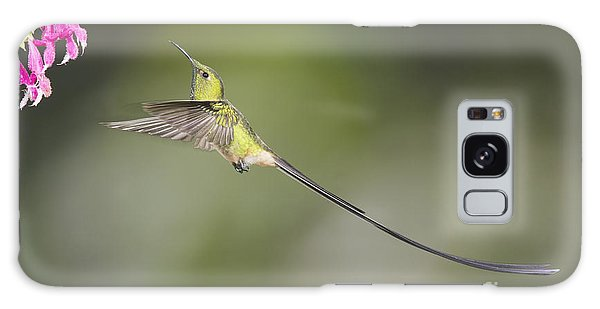 Black-tailed Trainbearer Hummingbird Galaxy Case