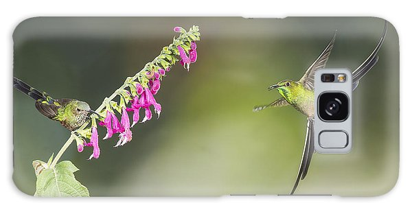 Black-tailed Trainbearer Hummingbirds Galaxy Case