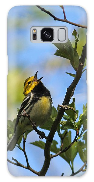 Black-throated Green Warbler Galaxy Case