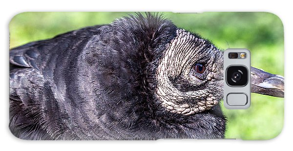 Black Vulture Waiting For Prey Galaxy Case