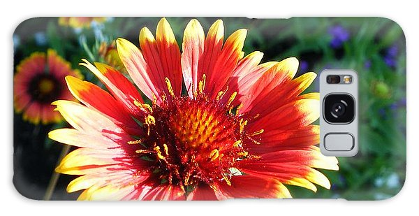 Blanket Flower Galaxy Case