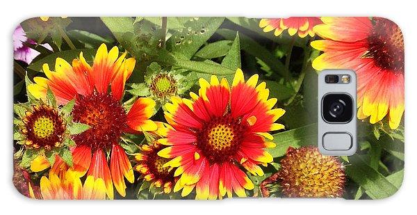 Blanket Flower Galaxy Case