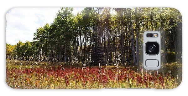 Blazing Red Grass In Colorado Galaxy Case