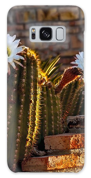 Haybale Galaxy Case - Blooming Cactus by Robert Bales