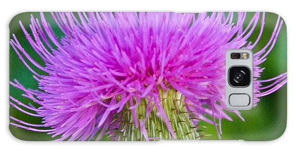 Blooming Common Thistle Galaxy Case