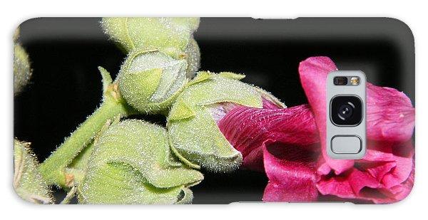Blooming Pink Hollyhock Galaxy Case