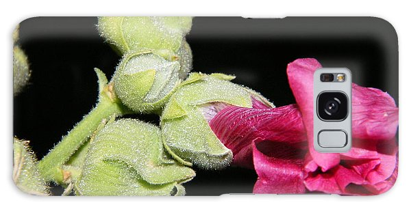 Blooming Pink Hollyhock Galaxy Case