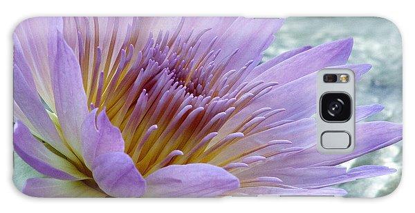 Bloom's Blush Galaxy Case by Alycia Christine