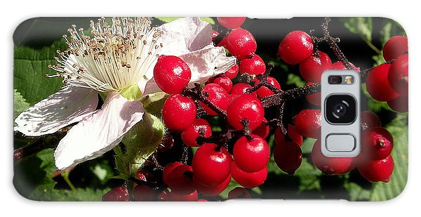 Blossom And Berries Galaxy Case by Brian Chase