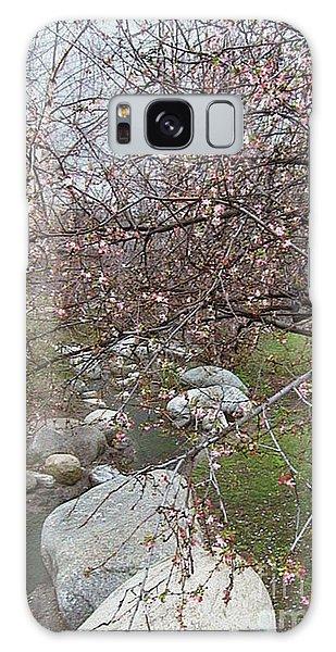 Blossom Brook Galaxy Case