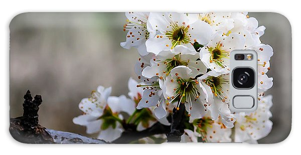 Blossom Gathering Galaxy Case by Terry Garvin