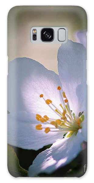 Blossom In The Sun Galaxy Case