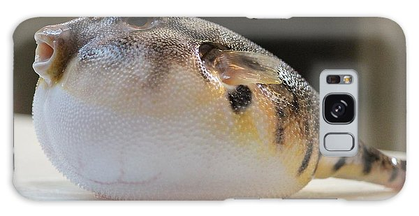 Blowfish 2 Galaxy Case by Cynthia Snyder