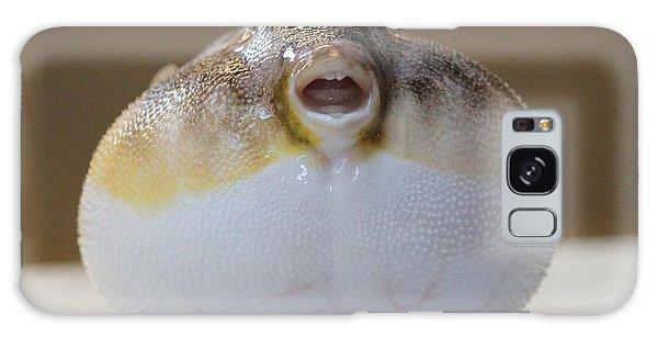 Blowfish Galaxy Case by Cynthia Snyder