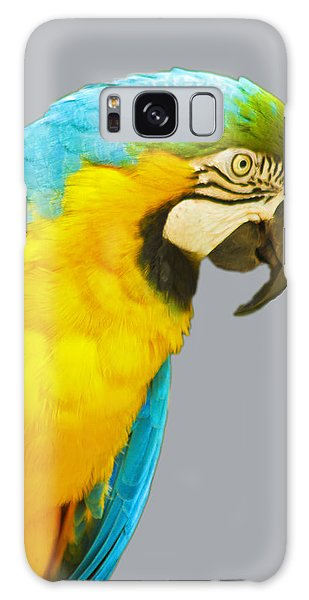 Blue And Gold Macaw Galaxy Case by Bill Barber