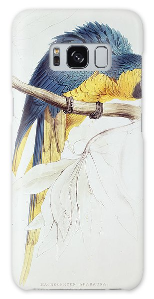 Blue And Yellow Macaw Galaxy S8 Case