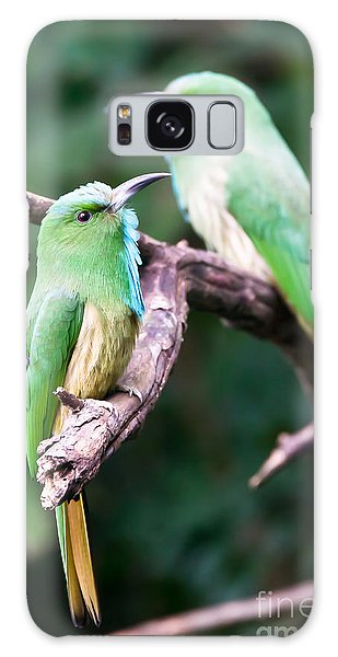 Blue-bearded Bee-eater Galaxy Case