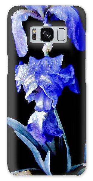 Blue Bearded Rhizomatous Irises Galaxy Case