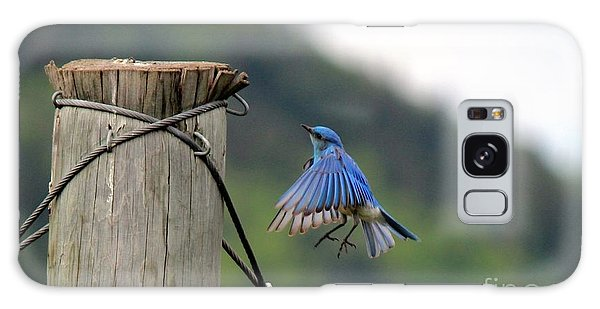 Galaxy Case featuring the photograph Blue Bird by Ann E Robson