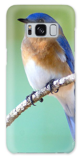 Blue Bird Portrait Galaxy Case