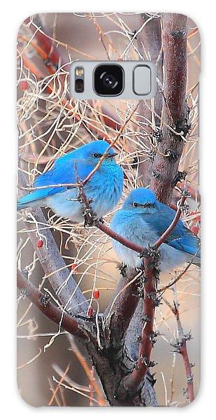 Blue Birds Galaxy Case