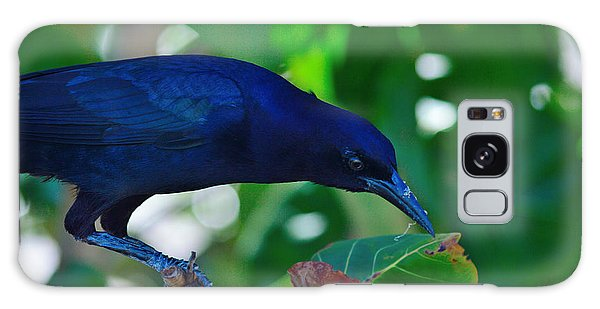 Blue-black Black Bird Galaxy Case