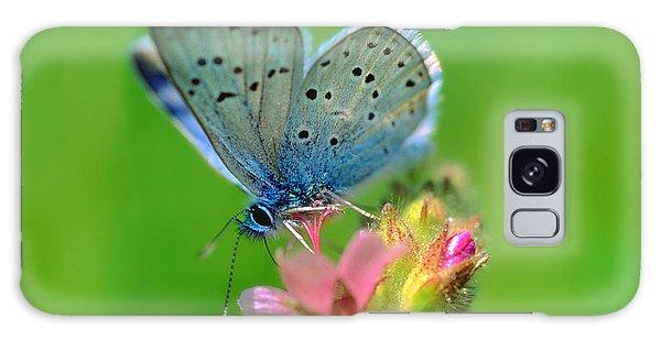 Blue Butterfly Galaxy Case by Wernher Krutein