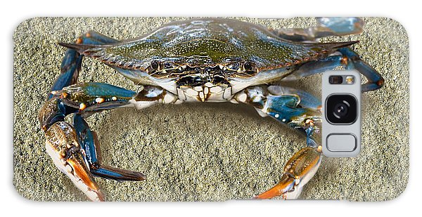 Blue Crab Confrontation Galaxy Case