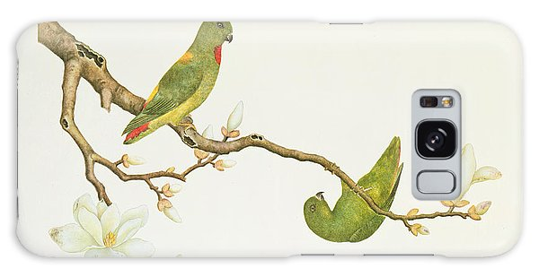 Parakeet Galaxy Case - Blue Crowned Parakeet Hannging On A Magnolia Branch by Chinese School