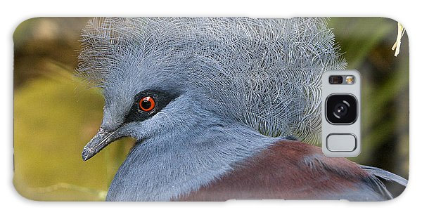 Blue-crowned Pigeon Galaxy Case by David Millenheft