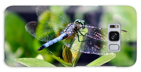 Blue Dragonfly Blue Dasher Galaxy Case by Jeanne Kay Juhos