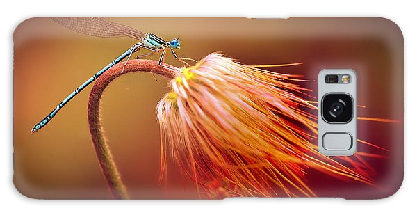 Blue Dragonfly On A Dry Flower Galaxy Case