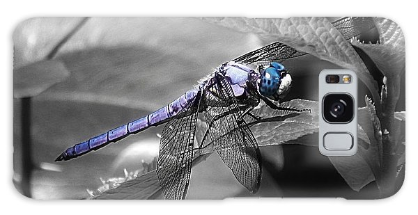 Blue Eyed Dragonfly Galaxy Case