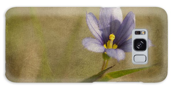 Blue Eyed Grass In Texture Galaxy Case