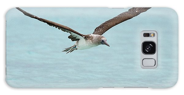 Blue-footed Booby In Flight Galaxy Case