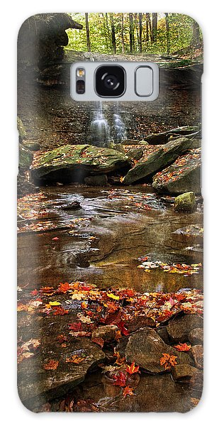 Blue Hen Falls In Autumn Galaxy Case