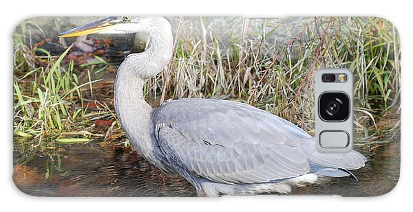 Blue Heron II Galaxy Case