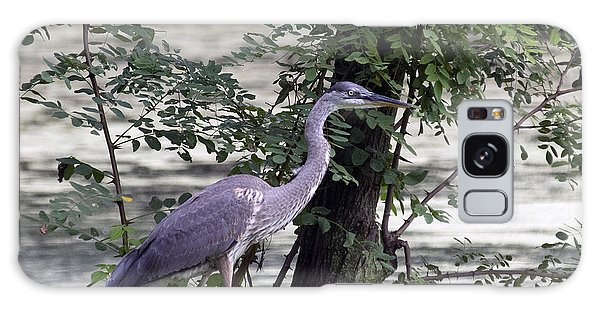 Blue Heron And Duck Galaxy Case