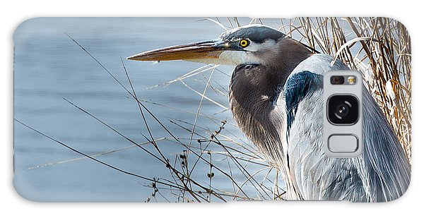 Blue Heron At Pond Galaxy Case