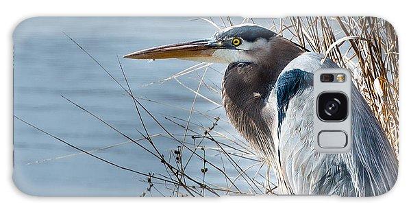 Blue Heron At Pond Galaxy Case by John Johnson