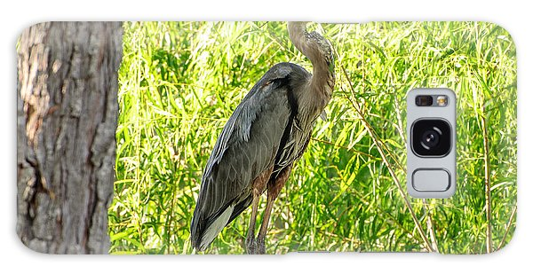 Blue Heron At Rest Galaxy Case