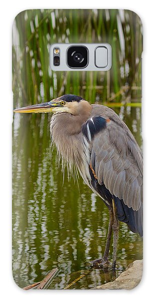 Blue Heron Galaxy Case by Duncan Selby
