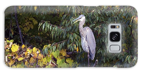 Blue Heron Perched In Tree Galaxy Case