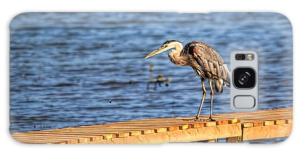 Blue Heron Spies The Dragonfly Galaxy Case
