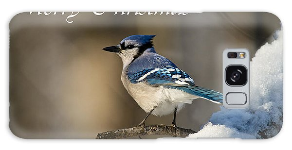 Blue Jay Christmas Card 2 Galaxy Case