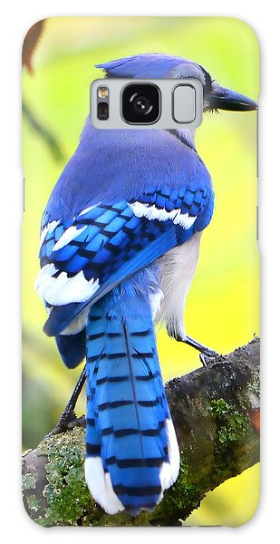 Blue Jay Galaxy Case by Deena Stoddard